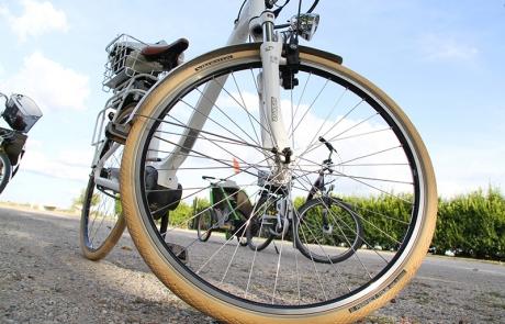 Fahrräder am Neusiedlersee